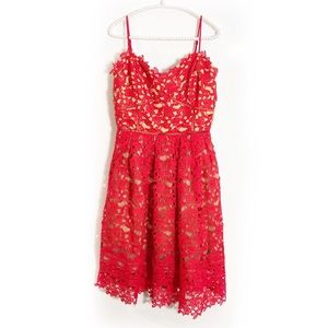 Ark & Co red lace dress Sz M